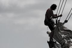 Tall Ships (Tom5) Tags: history boston boats massachusetts ships historic maritime tallships bostonharbor roweswharf flickrpublic tsac fileedit tallshipsatlanticchallenge sailboston2009 sailmassachusetts