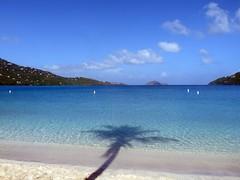 Magens Bay (procktheboat) Tags: shadow beach palmtree caribbean stthomas virginislands usvirginislands usvi magensbay greatnature unitedstatesvirginislands