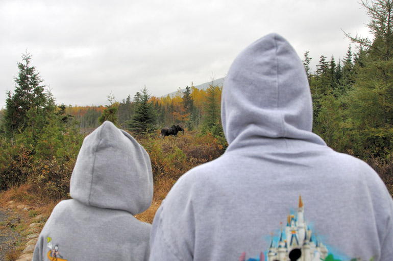 moose_tourists_0207