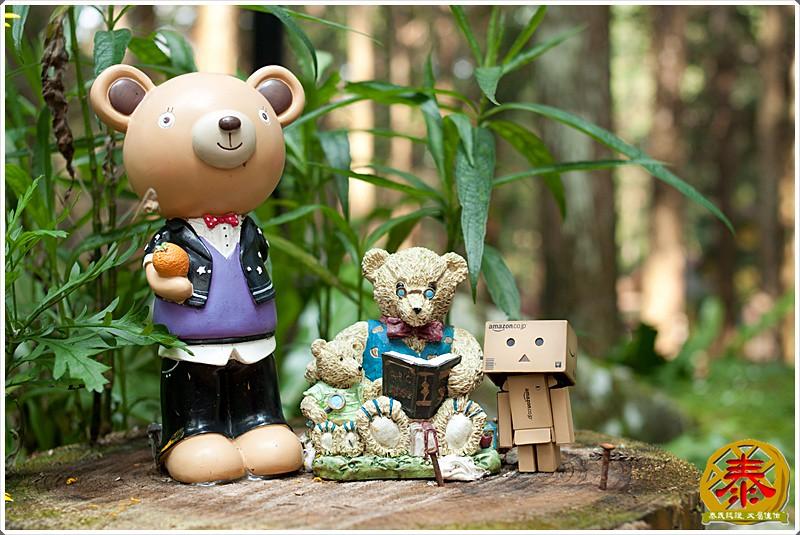 2011-04-02-03童話森林 (19)