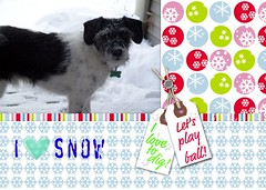 Quincy Loves Snow!