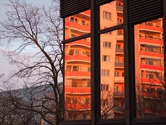 balcony reflection and tree (Winfried Veil) Tags: blue red orange reflection tree berlin rot window architecture germany deutschland mirror veil balcony balkon fenster capital hauptstadt plattenbau architektur blau spiegelung baum winfried bln marzahn multistoreybuilding mobilew winfriedveil stadtgetty2010