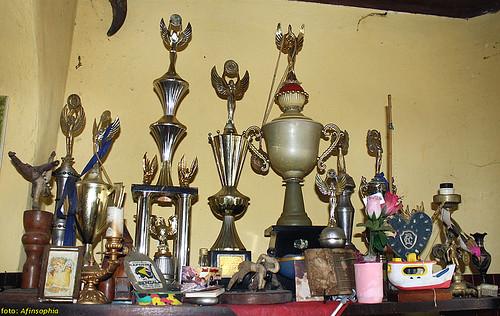 Os troféus de Mestre Ray