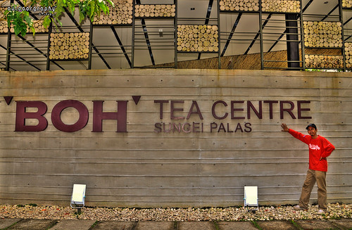 'BOH' Tea Centre