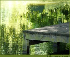 ou est le pcheur? (Emmanuel Delaux) Tags: france nature eau lac reflexions reflets tang yvelines elancourt concordians emmanueldelaux