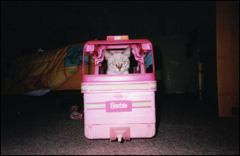 barbie caravan