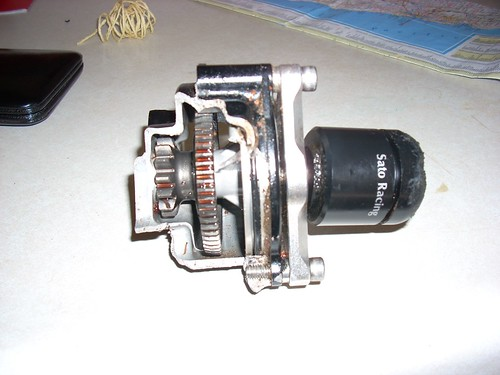 Cogumelos 600rr 2004