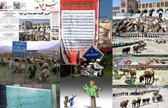 iran (abcd2054) Tags: democracy iran islam  democrat   zan irani  emam rahbar    azad khamenei    khomeini zendan sepah   eadam  entezami    eslami mollah eslam   akhond  pasdar      jslami