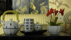 Miniature Weekly2 (annesstuff) Tags: orchid miniature teapot rement teaset dollhouse japaneseteapot japanesetea 16scale dollhouseminiature japaneseteaset annesstuff miniatureweekly