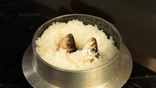 iwashi-meshi 鰯飯