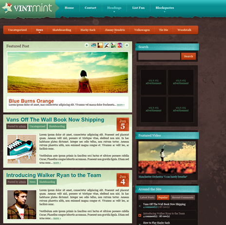 VintMint   WPNow Premium Wordpress Theme