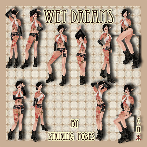 Wet Dreams Fatpack