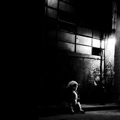 el problema de no seguir al rebaño es que si nadie te sigue a vos, te quedas solo (quino para los amigos) Tags: light london night danger dark noche alone grafitti sheep bored peligro alcohol solo drugs londres lamb drogas oveja aburrido darkie nosigasalrebaño