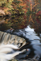 Waterfall  (JMS2) Tags: autumn fall nature water reflections river flow scenic thebronx cascade nybg newyorkbotanicalgarden bronxriver