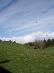 Kite Hill in Gasworks Park