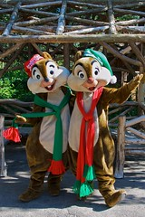 WDW Dec 2008 - Meeting Chip and Dale