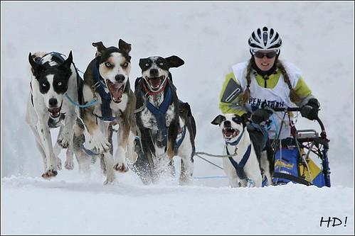 Marte Heilemann, NOR Alpen-Trail 2009