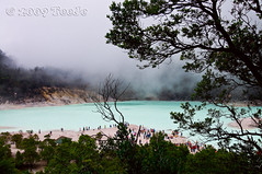 Kawah Putih - White Crater (T   J ) Tags: indonesia bandung nikkor d300 kawahputih ciwidey golddragon abigfave teeje whitecrater