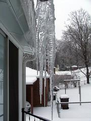 Ice Sickles (OhKyleL) Tags: ice backyard icesickles