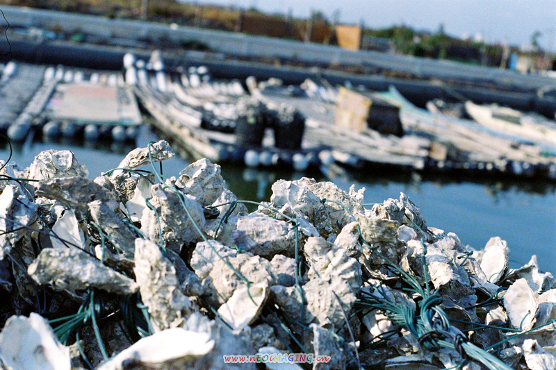 漁,鹽,湖--Kodak MAX 400(更新圖片)