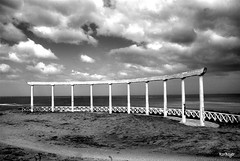 El partenn de Mar del Plata (roxboyer) Tags: blancoynegro gold star perfect photographer award playa estudio ojos cielo tres mardelplata the partenn blueribbonwinner digitalcameraclub supershot blackwhitephotos bej mywinners platinumphoto blackwhiteaward citrit goldstaraward roxboyer