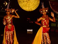 Bali Dancers / Balinese Dance - Pair (Dominic's pics) Tags: bali orange yellow indonesia gold golden dance costume dancers pair traditional culture slide scan event filter transparency 1998 noise hindu performer dharma canoscan balinese agama seriousexpression reducenoise balinesedance 8800f agamahindudharma