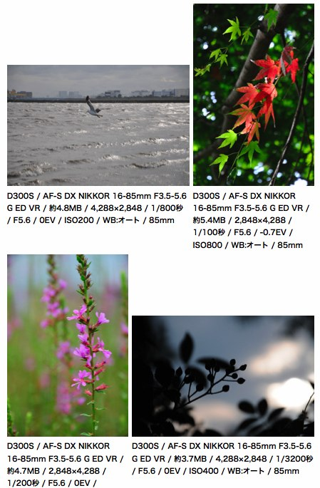 Nikon D300S plus Nikkor 16-85mm sample photos at DC.Watch