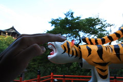 IMG_4923 (Ryohei_M) Tags: japan canon canoneoskissx2