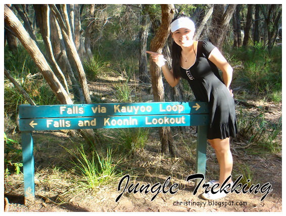 Crows Nest National Park: Jungle Trekking