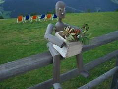 DOLOMITI - CORVARA - PRE CIABLUN - 28-08-2009 (CLAUDIO 49) Tags: fiori colori prato dolomiti monti rifugio altabadia sdraio corvara valbadia