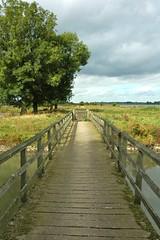 Goilberdingerwaard (StimpsonJCat) Tags: september brug lek gelderland culemborg betuwe natuurgebied staatsbosbeheer goilberdingerwaard rivierengebied gelderlandroute uiterwaardenlek