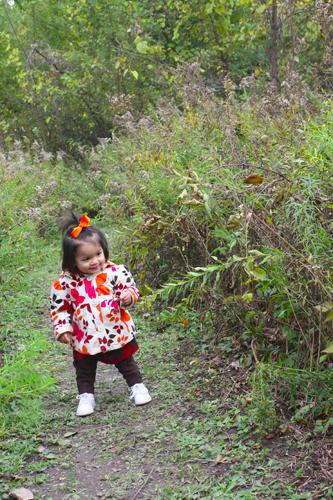 pumpkin walk 2