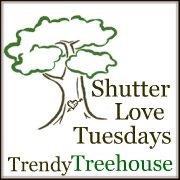 ShutterLoveTuesdays