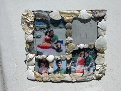 Shell Picnic Frame