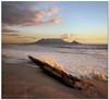 Flotsam (Panorama Paul) Tags: sunset shipwreck tablemountain blaauwberg nohdr sigmalenses nikfilters vertorama wwwpaulbruinscoza paulbruinsphotography nikond3100