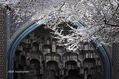 Snowy Isfahan (Alieh) Tags: blue snow architecture persian iran persia iranian  esfahan isfahan     aliehs alieh   holidaysvacanzeurlaub     saadatpour charbaghteologicalschool