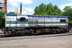 General Motors G-12W A608 (Pablo F. Cepero) Tags: argentina tren buenosaires locomotora ferrocarril haedo ferrocarrilroca