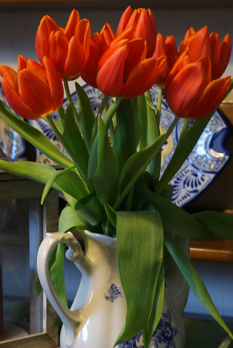 how to keep fresh tulips longer