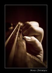 Quel che ho dimenticato, quel che so. (sed.non.satiata) Tags: sepia hands hand fingers mani violin mano mana dita chords dito corde violino seppia maini vioara degete corzi