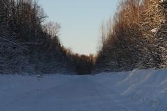 road alaska_7887 web