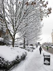 street with snow