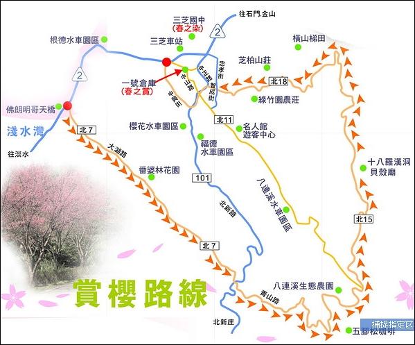 三芝賞櫻路線