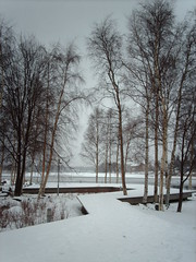 Raised island path (hugovk) Tags: camera winter snow ice fog digital suomi finland island december path foggy oulu hvk 2008 talvi raised pohjanmaa tuira sterbotten joulukuu uleborg hugovk geo:country=finland ouluprovince exif:ISO_Speed=50 pohjoispohjanmaa oulunkaupunginkirjasto oulunlni uleborgsln ostrabothnia norrasterbotten northernostrabothnia exif:Focal_Length=77mm digitalcamerads5mp exif:Flash=off imag6085 exif:Exposure=18 northernostrobothnia exif:Aperture=30 exif:Exposure_Bias=0 ds5mp camera:Model=ds5mp camera:Make=digitalcamera geo:region=ouluprovince geo:neighbourhood=tuira geo:county=northernostrobothnia geo:locality=oulu meta:exif=1364126555 raisedislandpath