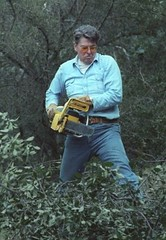 reagan_working