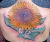 sunflower www.facebook.com/pages/Provincetown-MA/Coastline-Tattoo-S... Check out