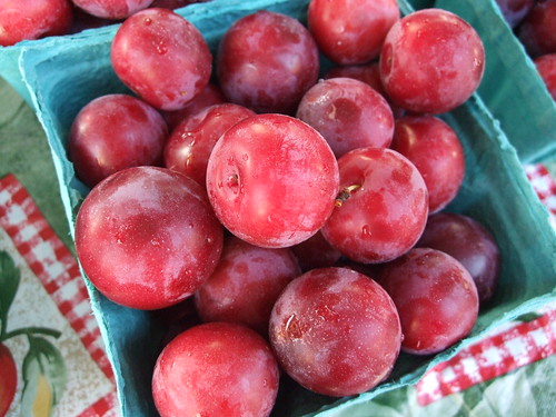 Mirabelle Plums from The Orchard of Bill and Vicky Thomas