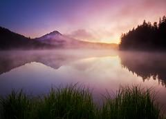 Foggy Trillium (Jesse Estes) Tags: reflection fog oregon mounthood trilliumlake 5d2 jesseestesphotography