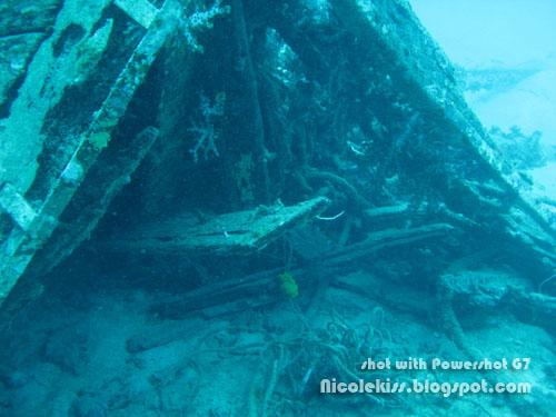 ship wreck 2