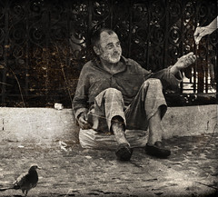 The Old Begger (Alex Pelecanos) Tags: old white money black bird beard pigeon human photograph begger leper  anawesomeshot
