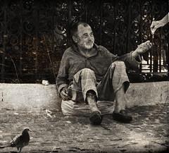 The Old Begger (Alex Pelecanos) Tags: old white money black bird beard pigeon human photograph begger leper سكس anawesomeshot